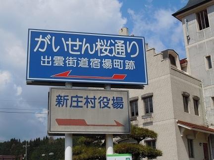 01 がいせん桜 案内標識.JPG