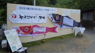 06 和気町 藤公園 東北応援鯉のぼり1.JPG