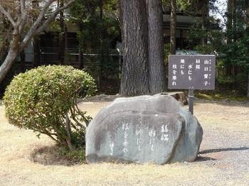 07 衆楽園 山口誓子・句碑.JPG