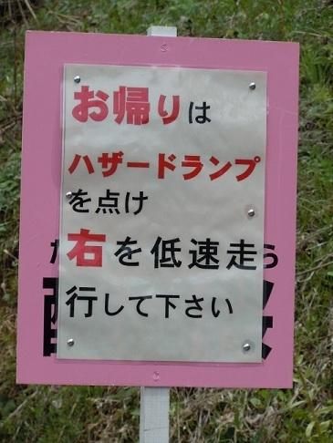 07 醍醐桜 交通規制.JPG