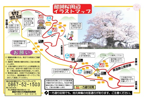 08 醍醐桜 周辺マップ.jpg