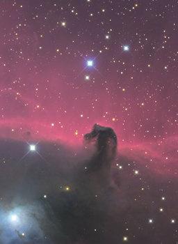 馬頭星雲.jpg